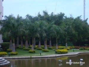 Hotels Global Hotel